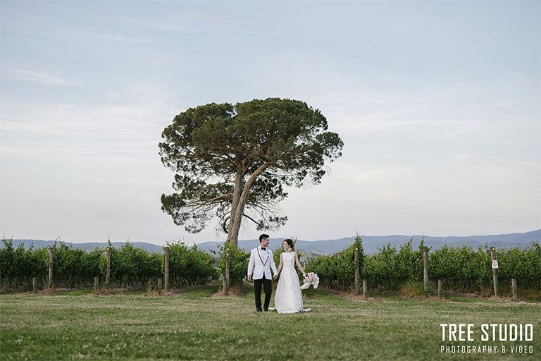 Stones of the Yarra Valley Wedding Photography KA 102 - Kelly & Alan's Wedding Photography @ Stones of the Yarra Valley